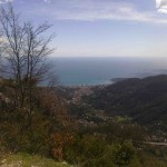 Looking down at Menton from near the top of Col de la Madone